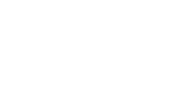 icon-banner-smart-governance